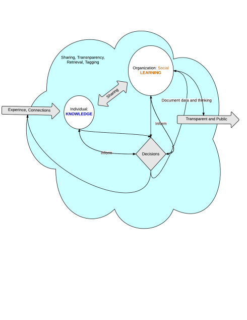 My rather poorly-rendered depiction of knowledge-learning-decision loop. The blue could is the systematic practice.