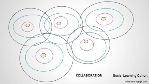 social cohort